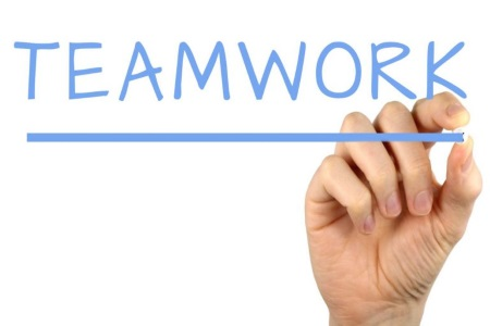 Teamwork In An Organisation