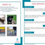 Pet Care Services Brochure Back